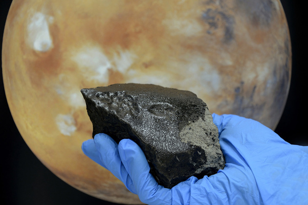 Black Beauty, the wettest meteorite from Mars